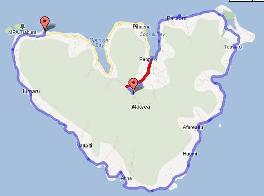 Moorea island (Tahiti) Belvedere side road