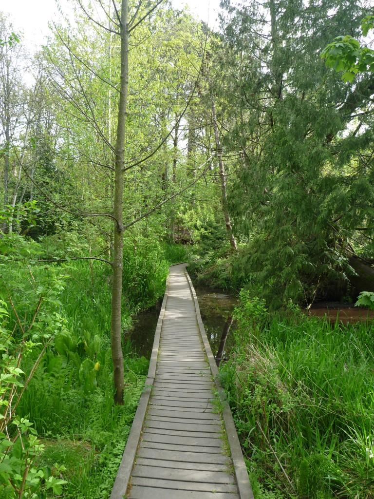 Reed College Lake Path