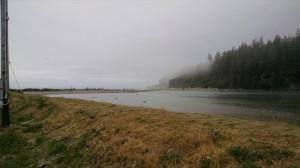 Quinalt River