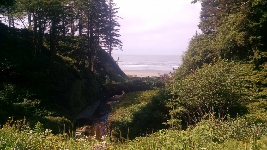 Pacific Ocean, north of Kalaloch Campground