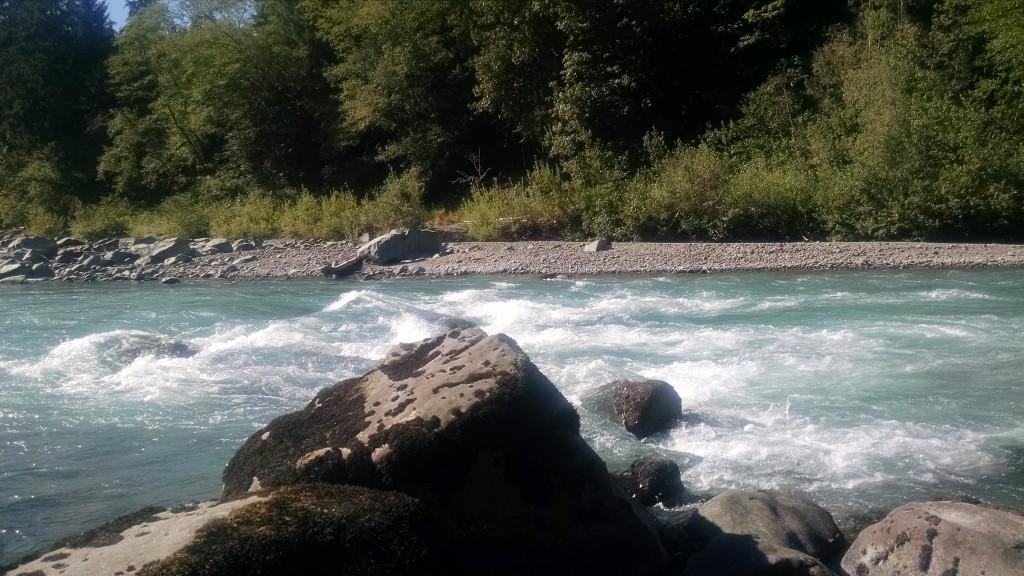 Hoh River resting rock