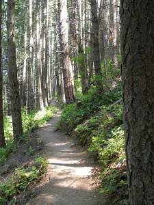 Pacific Northwest Trail